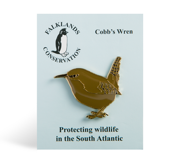 cobbs-wren-pin-badge