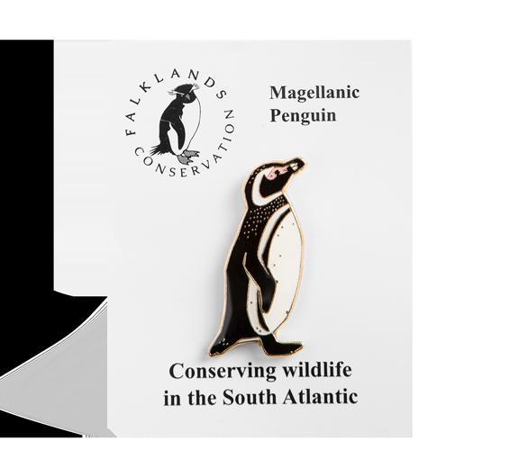 magellanic-penguin-pin-badge