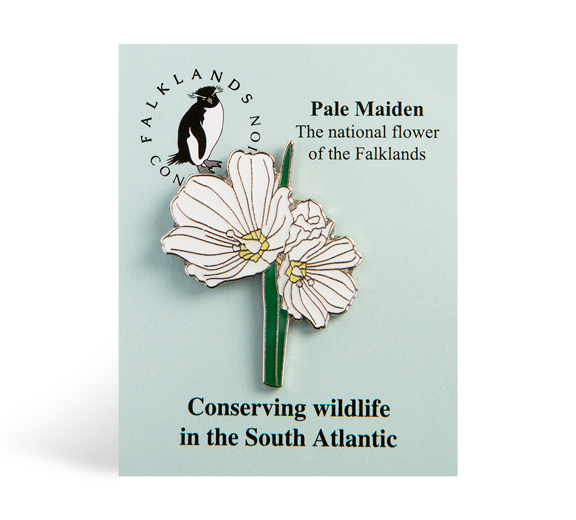 pale-maiden-pin-badge