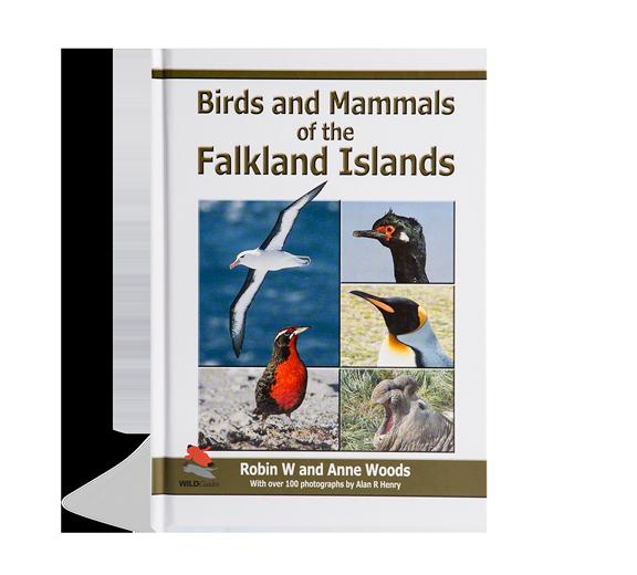 birds-and-mammals-of-the-falkland-islands
