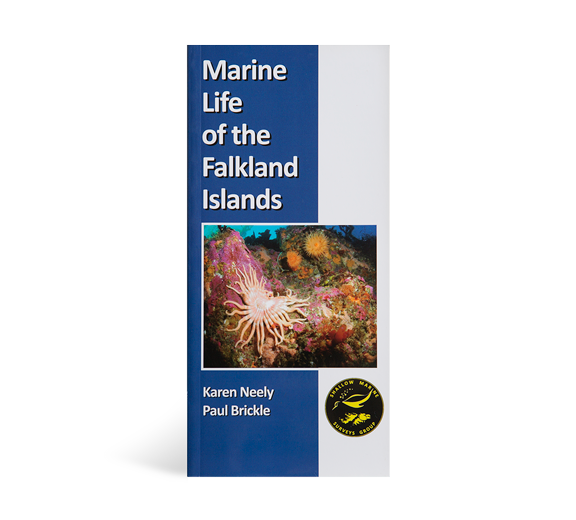 marine-life-of-the-falkland-islands-book