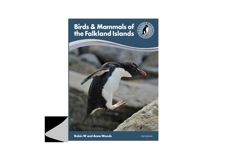 birds-mammals-of-the-falkland-islands